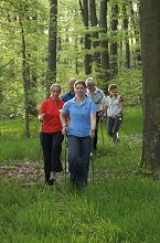 Bild Nordic Walking